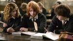 """Якою хорошою рисою характеру наділені фанати """"Гаррі Поттера"""": висновки вчених"""
