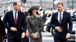 Принц Вільям з дружиною щиро привітав брата із заручинами: Ми шалено раді за Гаррі і Меган