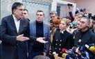 Тимошенко, Гриценко, Добродомов: хто з відомих політиків прийшов підтримати Саакашвілі