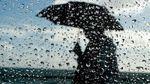 Прогноз погоды на 9 февраля: Левобережье зальют дожди, на западе продолжается зима