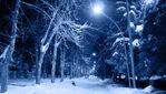 Правила поведінки у морозну погоду: як уникнути переохолодження та обмороження