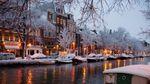 С цветами и снегом: как выглядит Амстердам в первый день весны