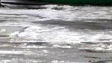 Харьковской областью пронесся ураган: без электричества осталось более 70 сел и городков