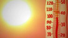 +30. Оригінальний план порятунку від нещадної спеки