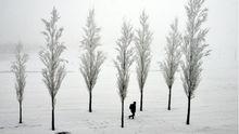 Зима вернулась: в Украине ударят морозы до -17