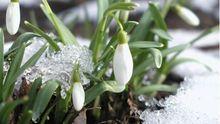 Весна буде холодною