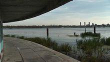 Река, из которой пьет воду большинство украинцев, на грани экологической кататсрофы, – экологи