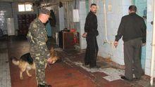 Після звірячого вбивства в Одеському СІЗО почалися катування в'язнів, – нардеп