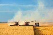 Украинские аграрии собрали рекордный урожай зерновых