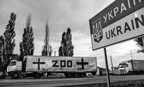 Силы АТО ликвидировали на Донбассе еще одного боевика: опубликовано фото