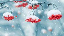 Якою буде зима в Україні – прогноз метеоролога