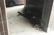 Поліція Києва назвала причину смерті безпритульного, знайденого під стінами лікарні