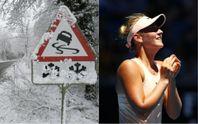 Главные новости 17 января: снова непогода, резонансное ДТП в Харькове и теннисные победы