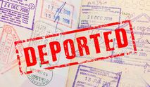 Чехия массово депортирует украинцев