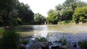 Серьезный ливень на Закарпатье: уровень воды в реках резко поднимается