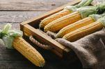 Як правильно варити кукурудзу: корисні поради