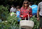 Стильна Меланія Трамп висадила капусту на городі біля Білого дому: фото