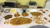 Правоохранители изъяли из подпольного цеха в Ровно 150 килограмм янтаря