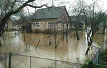 Наводнение на Закарпатье: в сети показали впечатляющее видео последствий непогоды