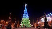В Україні обрали найвище новорічне дерево 2018 року