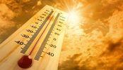 2017 год стал одним из самых теплых в истории