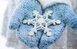 Прогноз погоди на 23 січня: в Україні буде морозяно і схід засипле снігом