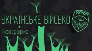"""""""Укропское войско"""": структура украинской армии в инфографике"""