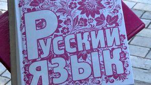 Киевские школьники получили учебники с российской пропагандой