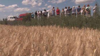 Агрофирма в Николаевской области незаконно пользуется землей селян