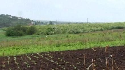 Реформування у земельній сфері відбудеться не скоро, — експерт