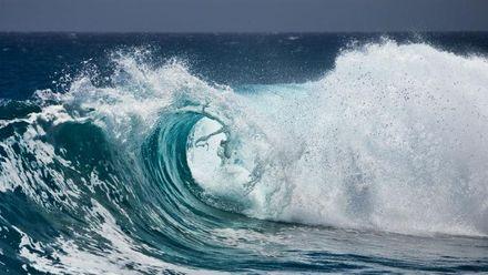 Жінка вижила після 20 годин проведених у відкритому океані
