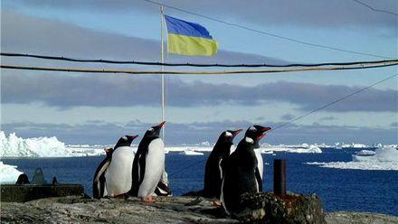 Як українці живуть в Антарктиді