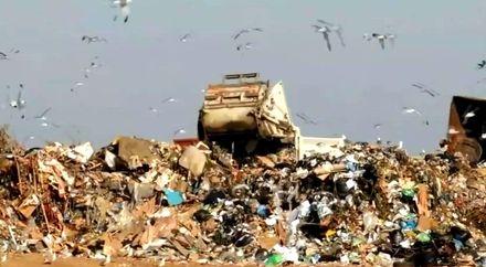 Какую пользу несет мусор