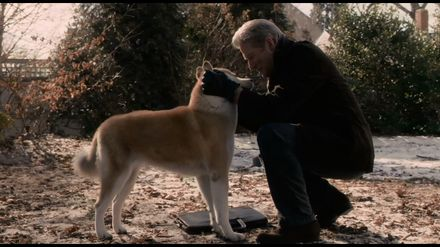 """Фільм дня. """"Хатіко: Вірний друг"""" – неймовірно зворушлива історія про вірного собаку"""
