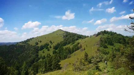 Что скрывает самая высокая гора Львовщины