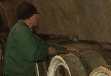 Кому принадлежит крымская винная индустрия после аннексии