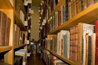 Київські бібліотеки та Венеціанський бієнале: що спільного?