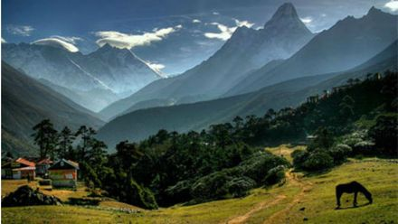 Индийский инженер придумал уникальный способ орошения полей в Гималаях: появилось видео