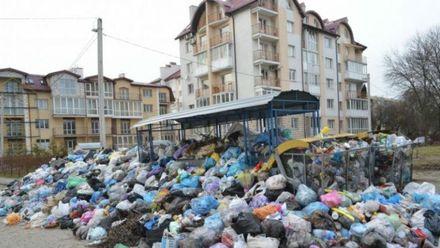 Львів'яни самотужки очищують місто від сміття