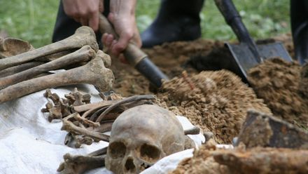 Вчені знайшли чергові докази людоїдства у давнину