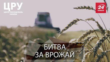 """Кривава бійня за гектари: хто і як """"віджимає"""" земельні ділянки"""