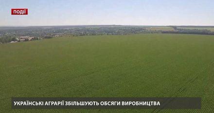 Украинские аграрии увеличивают объемы производства