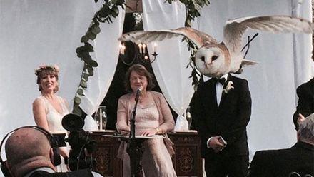 Щось пішло не так: найепічніші весільні фотографії