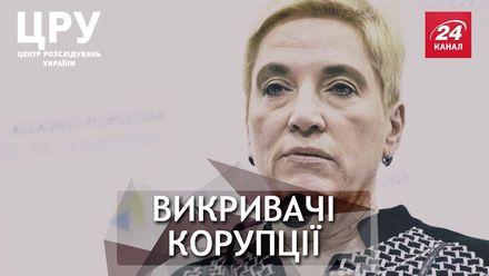 Обличители в опасности: куда исчезло дело, инициированное Соломатиной