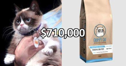 Господарі злої кішки Grumpy Cat виграли суд з приводу авторських прав