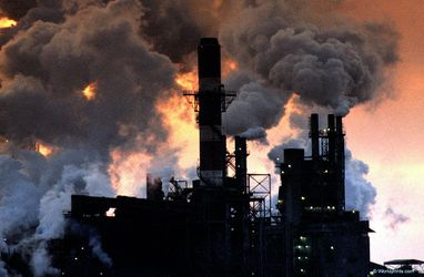Екологічні проблеми України: нові штрафи ситуацію не врятують