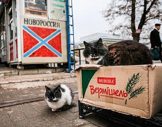 """Будни """"ЛНР"""": еда – насущная потребность, за которую совсем нечем платить"""