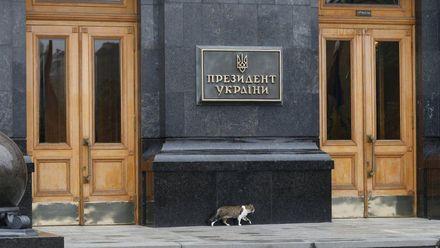 """У """"Самопомочи"""" есть много кандидатов на пост Президента Украины"""