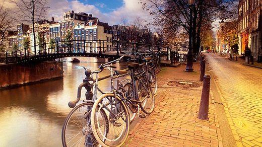Что стоит посетить в Гааге: советы туристам