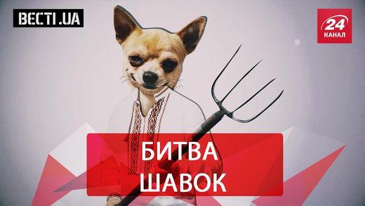 Вєсті.UA. Собачі бої в Раді. Що Спільного в Добкіна і Саші Грей